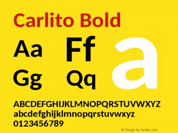 Carlito Font,Carlito Bold Font,Carlito-Bold Font|Carlito