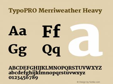 TypoPRO Merriweather Font,TypoPRO Merriweather Heavy Font