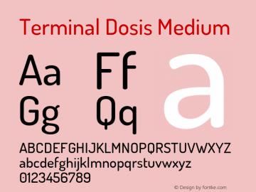 Terminal Dosis Medium Version 1.007 Font Sample