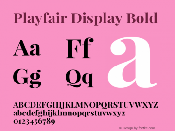 Playfair Display Bold Version 1.003;PS 001.003;hotconv 1.0.70;makeotf.lib2.5.58329; ttfautohint (v0.95) -l 42 -r 42 -G 200 -x 14 -w