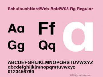SchulbuchNordWeb-BoldW03-Rg Regular Version 7.504图片样张