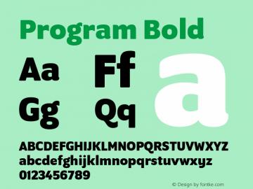 Program Bold Version 1.0 Font Sample