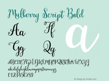 Mulberry Script Bold Version 1.000 Font Sample