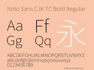 Noto Sans CJK TC Bold Font,Noto Sans CJK TC Font,NotoSansCJKtc-Bold