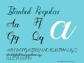 Istanbul Regular Version 1.00 June 21, 2015, initial release图片样张