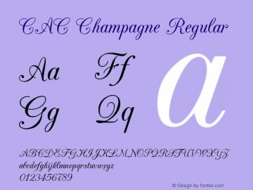 CAC Champagne Regular v1.2 8/28/96图片样张