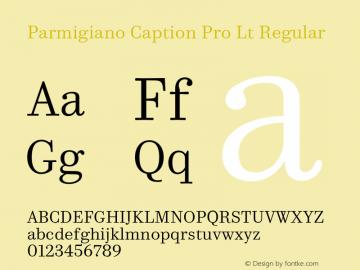 Parmigiano Caption Pro Lt Regular Version 1.0; 2014 Font Sample