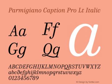 Parmigiano Caption Pro Lt Italic Version 1.0; 2014 Font Sample
