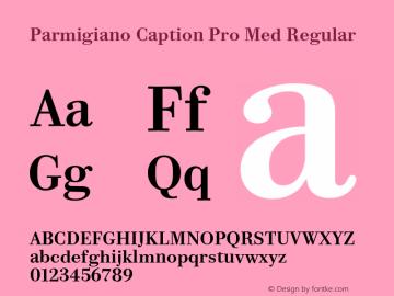 Parmigiano Caption Pro Med Regular Version 1.0; 2014 Font Sample
