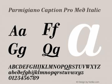 Parmigiano Caption Pro Med Italic Version 1.0; 2014 Font Sample