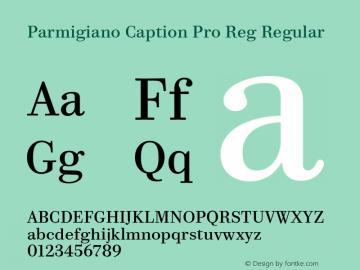 Parmigiano Caption Pro Reg Regular Version 1.0; 2014 Font Sample