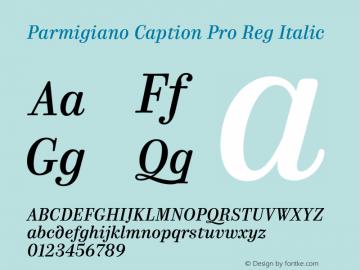 Parmigiano Caption Pro Reg Italic Version 1.0; 2014 Font Sample