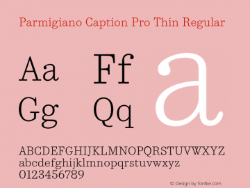Parmigiano Caption Pro Thin Regular Version 1.0; 2014 Font Sample