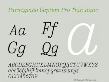 Parmigiano Caption Pro Thin Italic Version 1.0; 2014 Font Sample