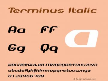 Terminus Font,Terminus-Oblique Font|Terminus-Oblique Version