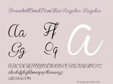 BrannbollSmalNumW00-Regular Regular Version 1.00 Font Sample