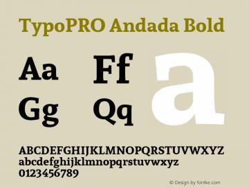 TypoPRO Andada Bold Version 1.003图片样张