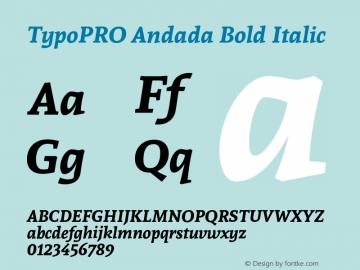 TypoPRO Andada Bold Italic Version 1.003图片样张