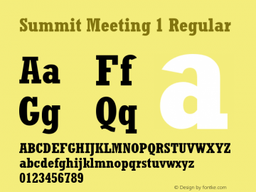 Summit Meeting 1 Regular 001.001 Jan 1992. MacPSWin set 260 chars. Font Sample