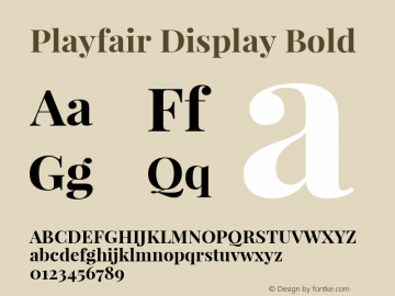Playfair Display Bold Version 1.004;PS 001.004;hotconv 1.0.70;makeotf.lib2.5.58329; ttfautohint (v1.4.1) Font Sample