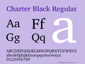 Charter Black Regular 11.0d1e1图片样张