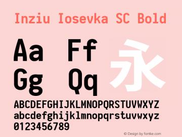 Inziu Iosevka SC Bold Version 1.6.2 Font Sample