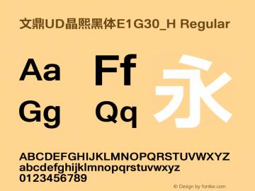 文鼎UD晶熙黑体E1G30_H Regular Version 1.00图片样张