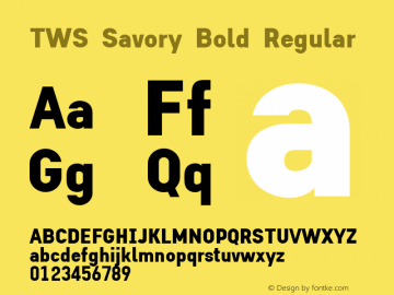 TWS Savory Bold Regular Version 1.0图片样张