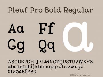Pleuf Pro Bold Regular Version 1.000;PS 002.000;hotconv 1.0.88;makeotf.lib2.5.64775 Font Sample