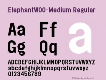 ElephantW00-Medium Regular Version 1.0 Font Sample