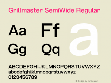 Grillmaster SemiWide Regular Version 1.000图片样张
