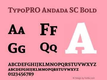 TypoPRO Andada SC Bold Version 1.003图片样张