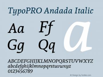 TypoPRO Andada Italic Version 1.003图片样张