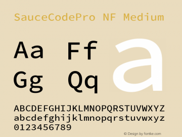 SauceCodePro NF Medium Version 2.010;PS 1.000;hotconv 1.0.84;makeotf.lib2.5.63406 Font Sample