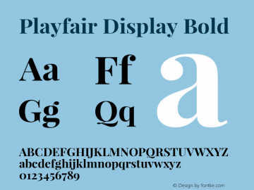 Playfair Display Bold Version 1.004;PS 001.004;hotconv 1.0.70;makeotf.lib2.5.58329; ttfautohint (v0.96) -l 42 -r 42 -G 200 -x 14 -w