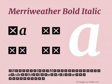 Merriweather Bold Italic Version 1.584; ttfautohint (v1.5) -l 6 -r 36 -G 0 -x 10 -H 350 -D latn -f cyrl -w