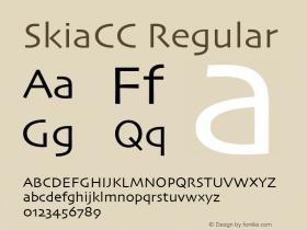 SkiaCC Regular Version 3.50图片样张