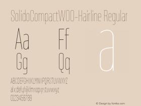 SolidoCompactW00-Hairline Regular Version 1.10图片样张