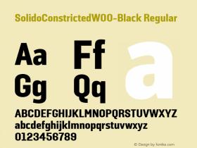 SolidoConstrictedW00-Black Regular Version 1.10图片样张