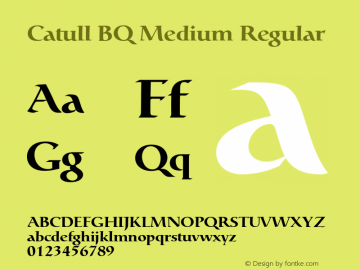 Catull BQ Medium Regular Version 001.000;Core 1.0.00;otf.5.02.2298;46.06MW Font Sample