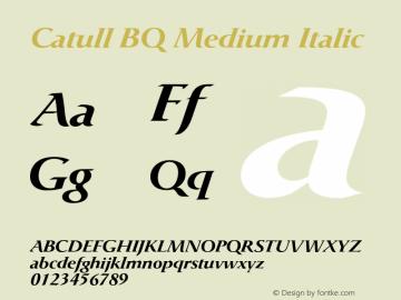 Catull BQ Medium Italic Version 001.003;Core 1.0.03;otf.5.04.2741;10.10W Font Sample