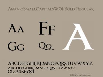 AnavioSmallCapitalsW01-Bold Regular Version 1.00图片样张