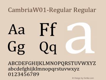 CambriaW01-Regular Regular Version 1.1 Font Sample