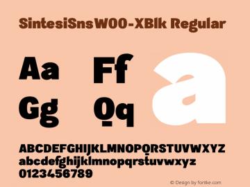 SintesiSnsW00-XBlk Regular Version 1.00 Font Sample