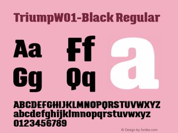 TriumpW01-Black Regular Version 1.00图片样张