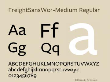 FreightSansW01-Medium Regular Version 1.00 Font Sample