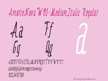 AmorieNovaW01-MediumItalic Regular Version 1.00图片样张