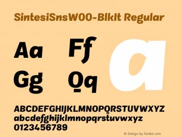 SintesiSnsW00-BlkIt Regular Version 1.00图片样张