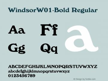 WindsorW01-Bold Regular Version 2.01图片样张