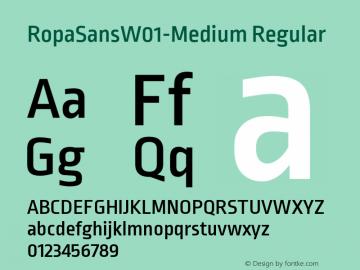 RopaSansW01-Medium Regular Version 1.10图片样张